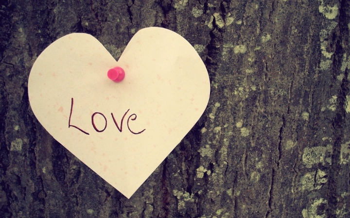 Love Your Tree: Why Shaming Your Body Will Never Lead to a Healthy Body