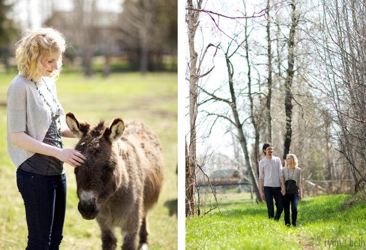 erin-donkey